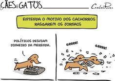 BEM ISSO.. #petmeupet #amoanimais #cachorro #filhode4patas #maedecachorro #paidecachorro #amomeucachorro