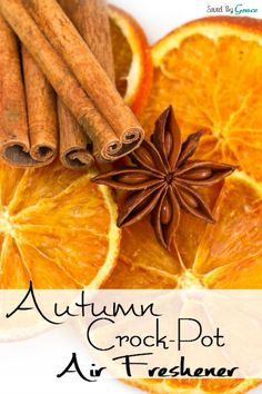 DIY Air Freshener ~ This warm and inviting autumn crock-pot air freshener is sure to make your home smell just like the harvest! And it's so simple to do! Homemade Potpourri, Potpourri Recipes, Stove Top Potpourri, Simmering Potpourri, Homemade Air Freshener, Natural Air Freshener, House Smell Good, House Smells, Fall Smells