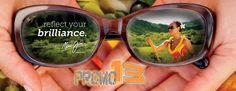 ya tenemos la distribución de los mejores lentes para sol!!