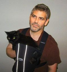 George Clooney with a cat in a BABY BJORN! Aaahh, the glorious things that people photoshop #GeorgeClooney