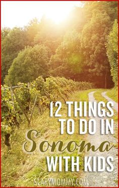 Planning a trip to wine country? It isn't just for adults in Sonoma - there's plenty for the whole family to do! Get great tips and ideas for fun things to do with the kids (from a real mom who KNOWS) in Scary Mommy's travel guide!  summer   spring break   family vacation   vineyard   parenting advice