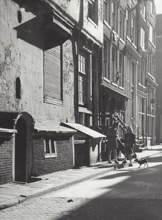 1949 - 1954. Two girls and a dog in the Jordaan section of Amsterdam. Photo Kees Scherer. #amsterdam #1949 #Jordaan