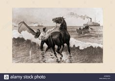 The Gussie Expedition: Landing horses through the surf under fire from the shore. The Gussie was an officially sponsored supply vessel whose captain's poor choice of landing spots resulted in two failed attempts to deliver cargo to Cuban rebels during The Spanish-American War in 1898. After the drawing by R.F. Zogbaum.