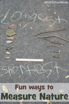 Fun ways to Measure Nature 9 Learning Activities for Outside (and a new After School Linky!)