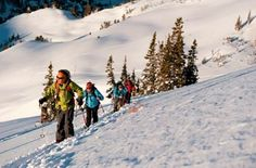 Backcountry Nordic Tour Skiing, Tours, Mountains, Nature, Travel, Outdoor, Ski, Outdoors, Naturaleza