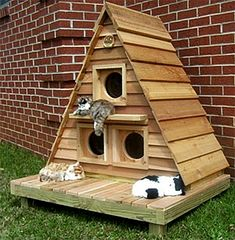 Cat Cottage Triplex01