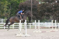 Jumping the Oxer like a champ. Jezebel is training as a jumper http://myexracer.com/wp-content/uploads/2014/10/IMG_8482.jpg