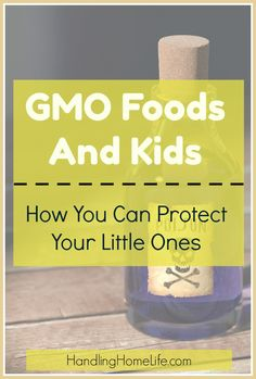 Well this was eye opening! I didn't realize how damaging GMO foods are. I will be taking a much closer look at what my kids are eating and making changes ASAP! Parenting Toddlers, Parenting Styles, Parenting Advice, Teaching Manners, Gentle Parenting, Peaceful Parenting, Attachment Parenting, How To Protect Yourself, Kids Health
