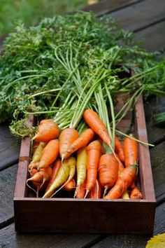 Juice it, Dice it or Eat Raw ~  Carrots reduce the risk of certain types of cancer by up to one-third.  It also  helps to regulate the digestive system.