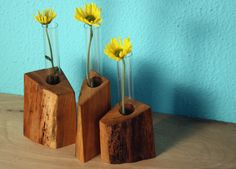 Cenzo Design - Pittsburgh Modern Furniture  - Reclaimed Wood Test Tube Glass Bud Flower Vase Holder 1