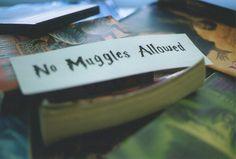no muggles allowed