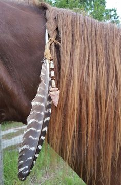 Arrowhead and Feather Equine Mane, Tail or Hair Ornament - turkey feather horse jewelry - American Indian Style Horse Costume Horse Mane Braids, Horse Hair Braiding, All The Pretty Horses, Beautiful Horses, Horse Fancy Dress, Horse Halloween Costumes, Native American Horses, Indian Horses, Horse Tail