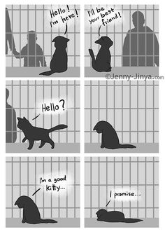 Heart-rending Viral Black Cat Comic Has A Beautiful Sequel - World's largest collection of cat memes and other animals Short Comics, A Comics, Black Cat Comics, Black Cats, Black Cat Humor, Funny Animals, Cute Animals, Cute Stories, Cute Kittens
