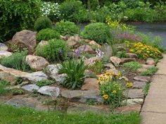 Rock Gardens Ideas 20 rock garden ideas that will put your backyard on the map Rock Garden By Rachel54