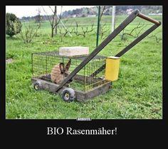 BIO Rasenmäher! | Lustige Bilder, Sprüche, Witze, echt lustig