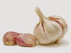 Alimento com caloria negativa - Alho: alimento que ajuda a combater vírus, infecções e inflamações, além de auxiliar em problemas respiratórios, como asma e bronquite. É fonte de potássio, cálcio e magnésio.