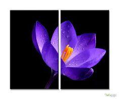 mor çiçek resimleri ile ilgili görsel sonucu