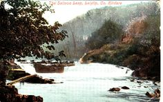 Vintage Colour Postcard - The Salmon Leap, Leixlip, Co. Kildare Ireland Listing in the Ireland,Topographical,Postcards,Collectables Category on eBid United Kingdom
