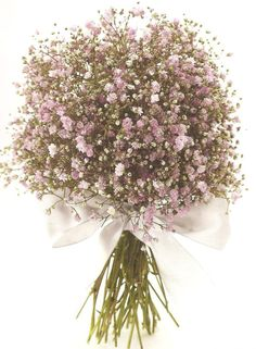 Pink gypsophilla - we could use this as an alternative to the white for more colourful table decorations.