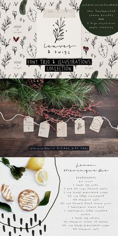 Leaves and Twigs is a handwritten font trio and floral illustrations collection with lots of bonus goodies, that is perfect for logotype design, branding packaging, social media posts. Just in time for the holidays, Leaves and Twigs is a also perfect for homemade seasonal designs (such as postcards, prints, present tags). #fonts #illustrations #christmas Creative Design, Web Design, Graphic Design, Me And My Dog, Brush Font, Floral Illustrations, Typography Fonts, Paper Texture, Cool Artwork