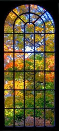 as gorgeous as any man made stained glass window