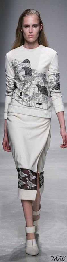 Fall 2015 Ready-to-Wear Rahul Mishra - Paris