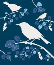 Birds blauw