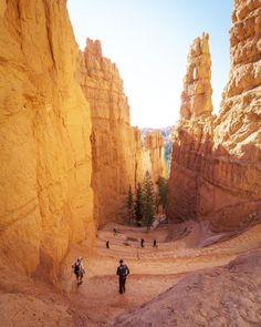 The Best of Bryce Canyon National Park #bestnationalParkUsa
