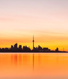 .Toronto Wallpaper Toronto, Oh The Places You'll Go, Places To Visit, Toronto Houses, Toronto Ontario Canada, Toronto Skyline, Cityscape Art, Canada Travel, Cn Tower