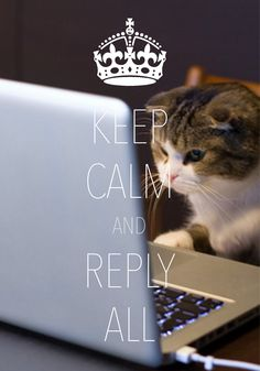 keep calm and reply all / Created with Keep Calm and Carry On for iOS #keepcalm #catsandcomputers