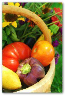 Plan a Vegetable Garden Layout for Year-Round Gardening