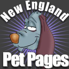 Search All of New England - ALLofNE - All of New England - Times Magazine Foody