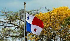 the Panama Flag