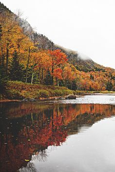 Discovered by RoseZella. Find images and videos about nature, water and autumn on We Heart It - the app to get lost in what you love. Affinity Photo, Autumn Aesthetic, Seasons Of The Year, Autumn Inspiration, Belle Photo, Fall Halloween, Samhain Halloween, The Great Outdoors, Nature Photography