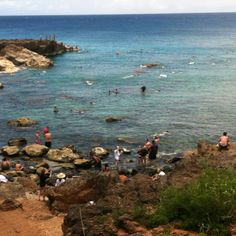Shark's Cove -best snorkeling in Oahu. We went early in the morning when we were practically alone out there. Amazing!