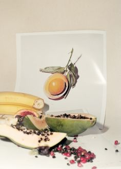 fruit study (II), 2013 by adam kremer