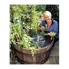 Make your own mini pond. Perfect for small patios and apartment balconies.  Everything you need will be arriving in April.