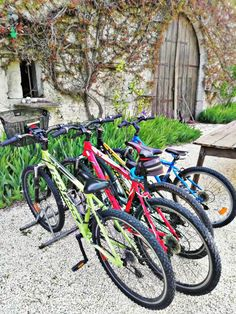 Chris at @BikeHireDirectFrance Charente Maritime had a busy weekend getting #velos ready for some Easter #bike rides!  For information on our great value bike hire visit the link in our bio :-)  #CharenteMaritime #NouvelleAquitaine #France #BikeHireDirect #DispoVelo #French #cylisme #cycling #cyclinginFrance Bike Rides, Aquitaine, Cycling, Easter, France, Link, Biking, Bicycling, Easter Activities