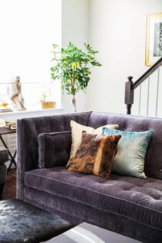 Before & After: A Multipurpose Living Room Makeover (with Lonny's executive editor). From the start, I was drawn to the classic, generous lines of the Clancy Sofa from Arhaus—and its plush yet forgiving surface in a moody pewter hue.