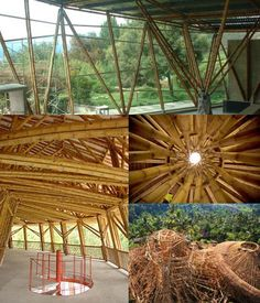 Big Tree Farms is building the world's largest bamboo commercial structure for their chocolate factory. Sweet.
