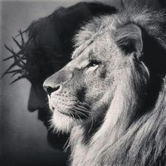 25 Ideas For Tattoo Animal Celtic Christian Images, Christian Art, Lion Tattoo With Crown, Tribal Tattoos, Tattoos Skull, Lamb Tattoo, Thorn Tattoo, Christ Tattoo, Spiritual Pictures