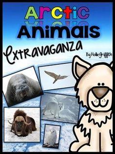 This Arctic Animals
