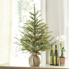 I want to put a small tree in our bay window this Christmas