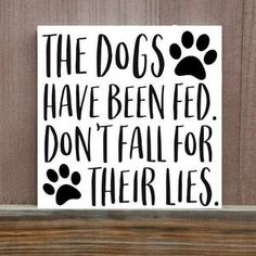Funny Dog Signs, Cat Signs, Wood Signs, Cat Quotes, Animal Quotes, Canvas Quotes, Hand Painted Canvas, Cat Wall, Diy Stuffed Animals