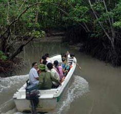 HCM City to develop river tourism