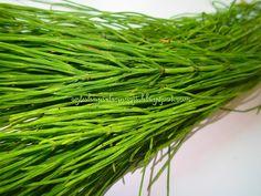 Świetny krem pod oczy dostępny w aptece. Asparagus, Herbs, Studs, Herb, Medicinal Plants