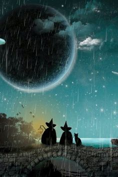 :) Witches and black cat under the moon