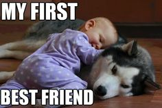 agreed love my puppy