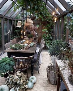 Autumn treasures collect by in beautiful greenhouse – Daisy's decor diary Outdoor Rooms, Outdoor Gardens, Outdoor Living, Outdoor Decor, Garden Oasis, Home And Garden, Conservatory Design, Backyard Greenhouse, Garden Structures