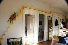 :} Amazing cat shelf, tower, house decor!